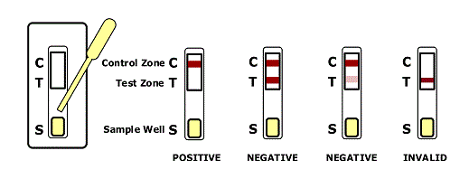 nicotine test